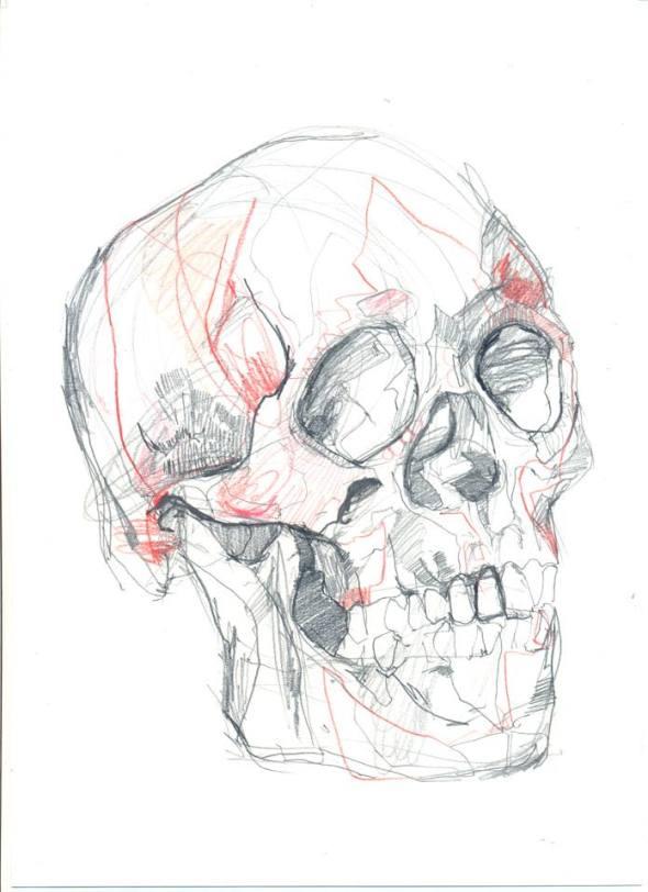 ks_skull3